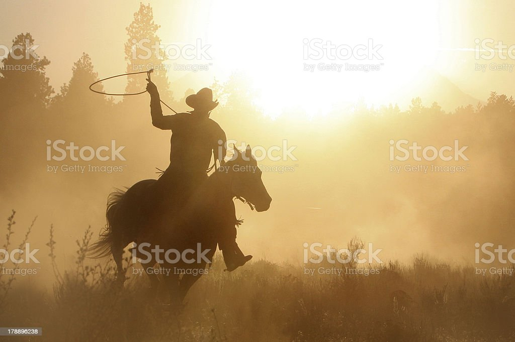 Cowboy roping on his horse silhouette stock photo