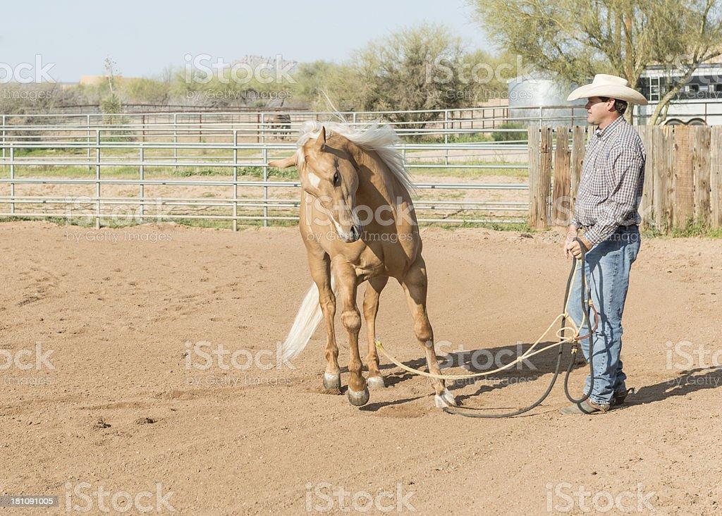 Cowboy setting horse loose into corral stock photo