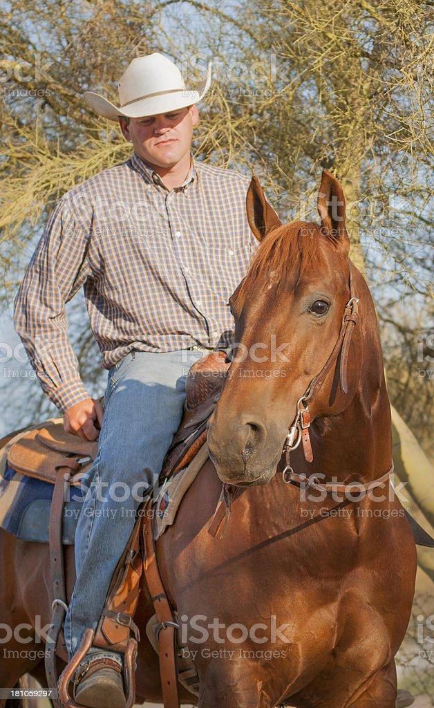 Cowboy sitting on Sorrel horse royalty-free stock photo