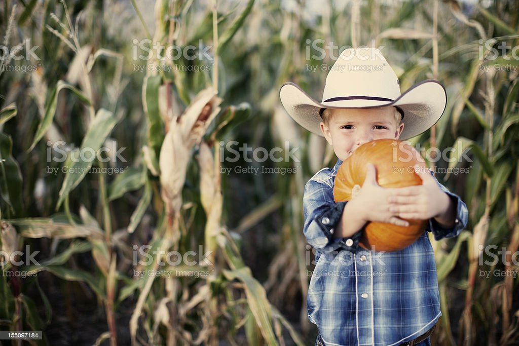 Cowboy with Fall Pumpkins stock photo