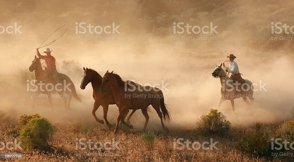 cowboys and wranglers 15 royalty-free stock photo