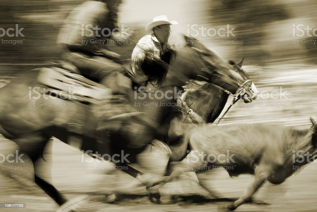 Cowboys calf roping at a rodeo in Montana stock photo