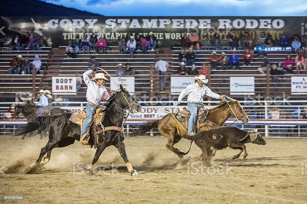 Cowboys chasing bull with lasso at Rodeo Cody Wyoming stock photo