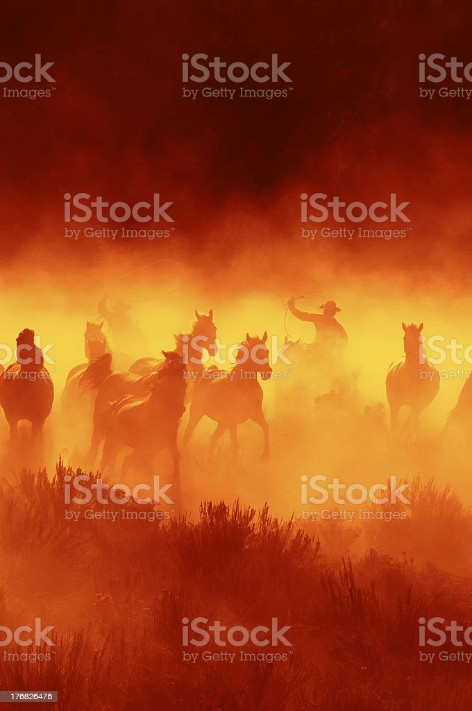 Cowboys Chasing Wild horses stock photo