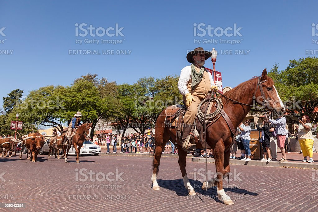 Cowboys in the Fort Worth Stockyards stock photo