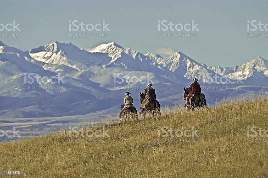 Cowboys on the range, a Montana horse ranch stock photo