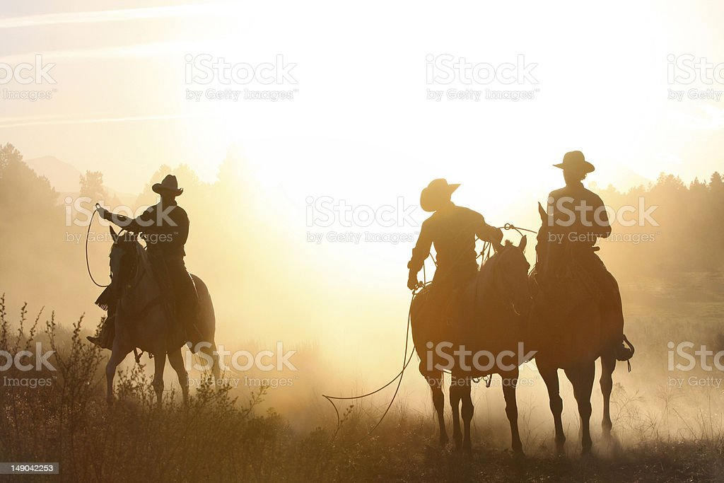 cowboys_ silhouette_evening horse round up stock photo