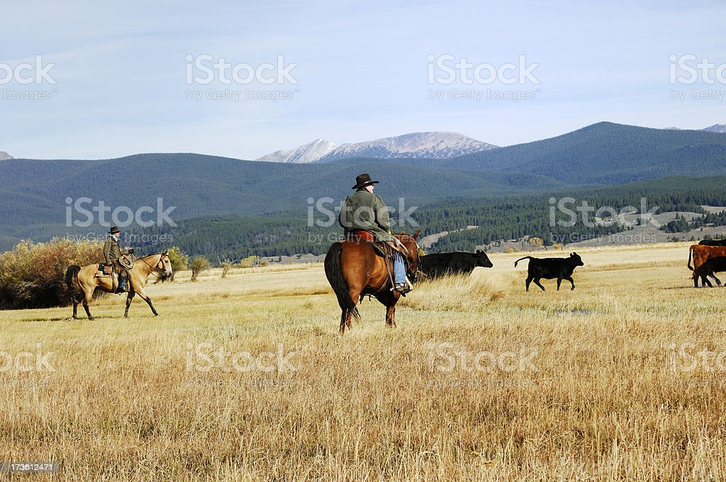 Cowboys,Horses and Mountains royalty-free stock photo