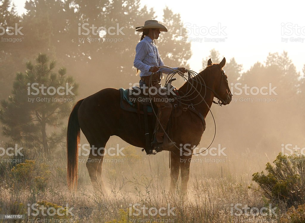 cowgirl on horse at dusk royalty-free stock photo