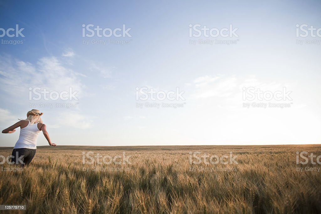 Cowgirl running through wheat field royalty-free stock photo
