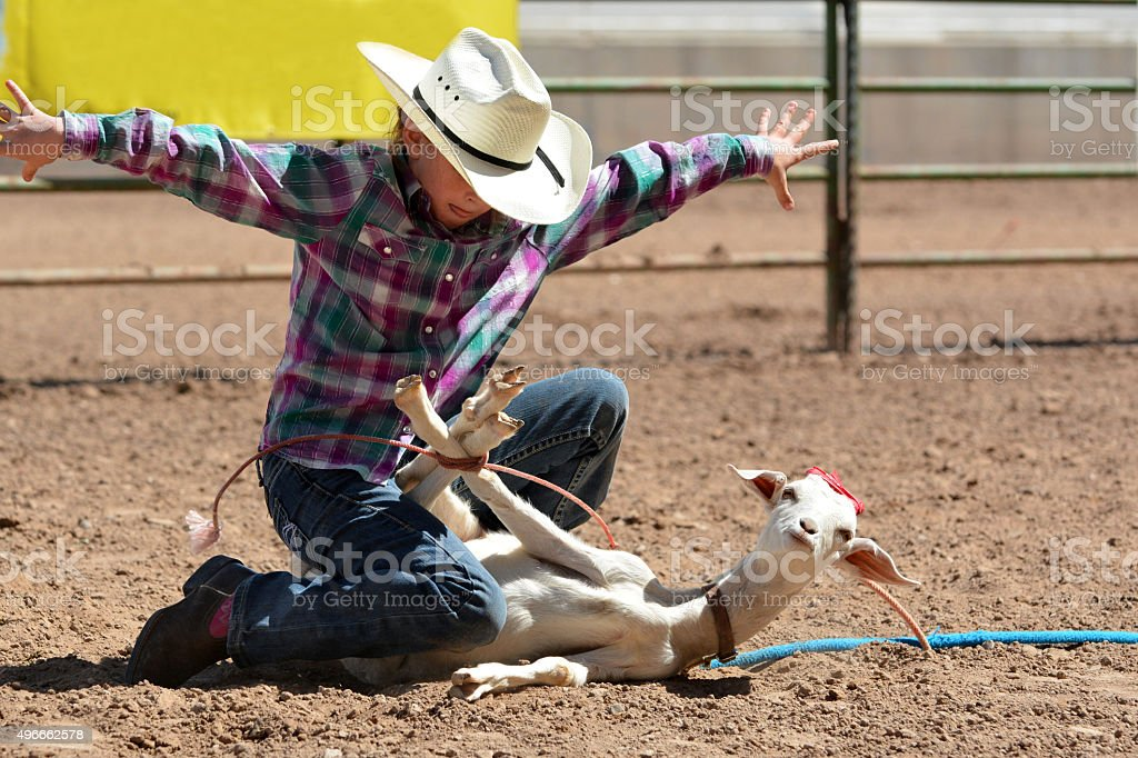 Cowgirl Tying a Goats Legs stock photo