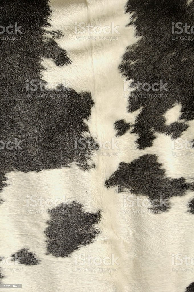 Cowhide stock photo