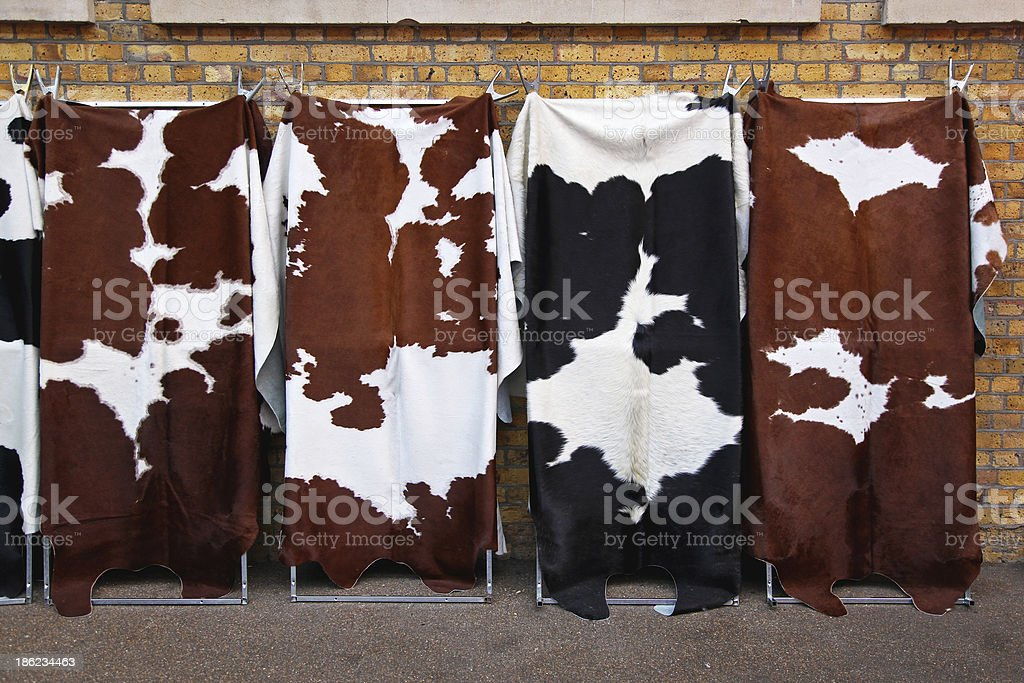 Cowhides royalty-free stock photo