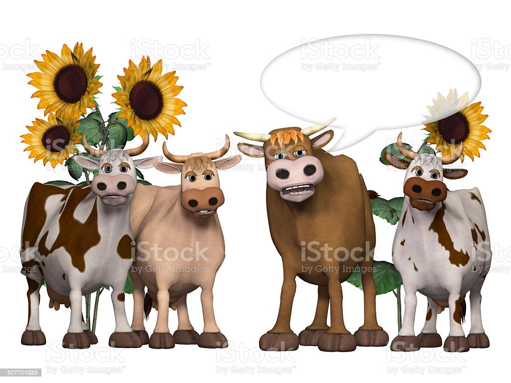 cows und bull saying something interesting stock photo