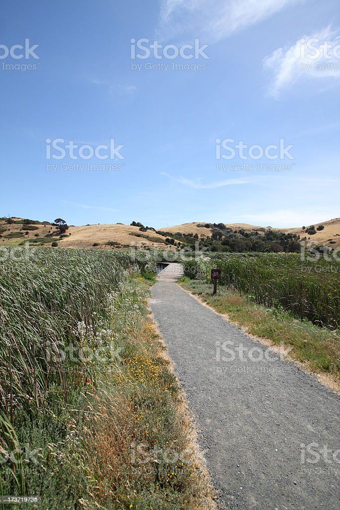 coyote hills marsh royalty-free stock photo