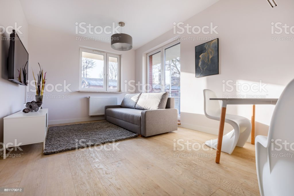 Cozy living room with sofa stock photo
