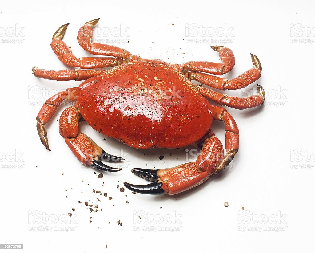Crab and pepper royalty-free stock photo