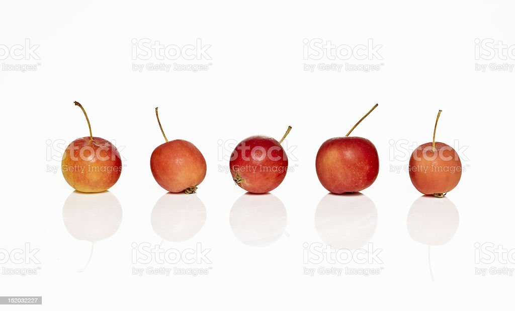 Crab Apples stock photo