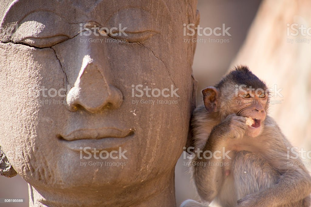 Crab eating macaque on Buddha statue stock photo
