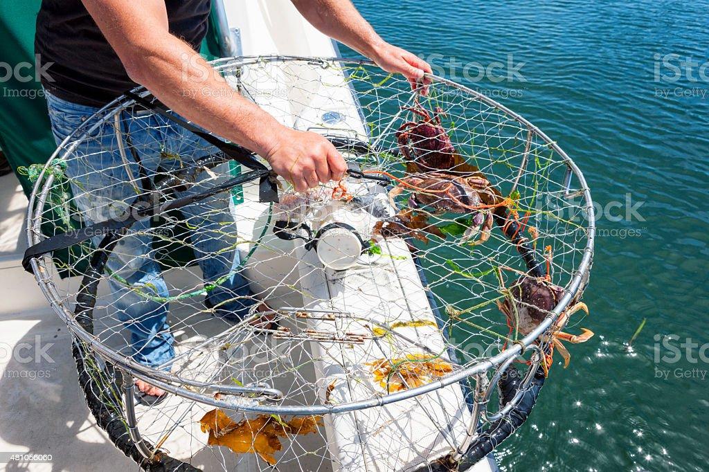 Crab Fishing stock photo