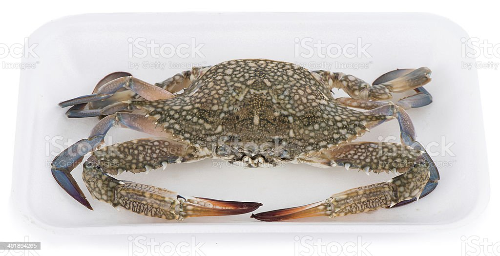Crab in Market Package royalty-free stock photo