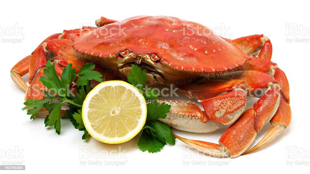 Crab isolated stock photo