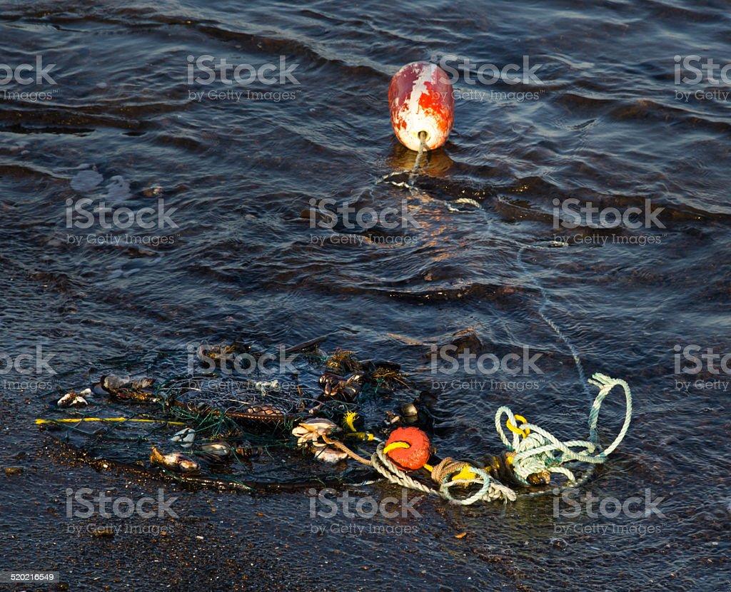 Crab net washed ashore on Oregon Coast stock photo