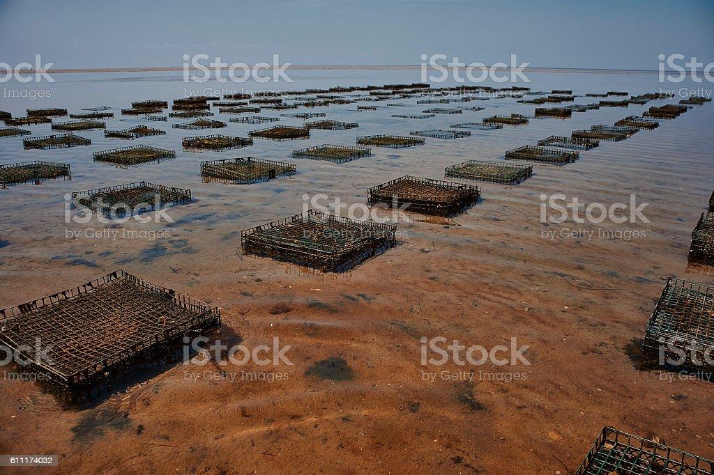 crab traps in cape cod bay stock photo
