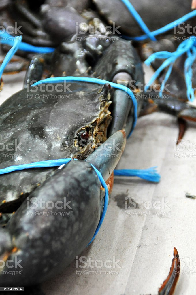 Crabs at Market stock photo