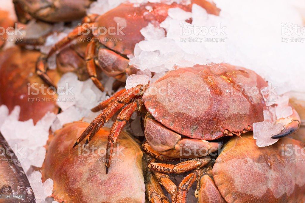 Crabs in Borough Market, London stock photo