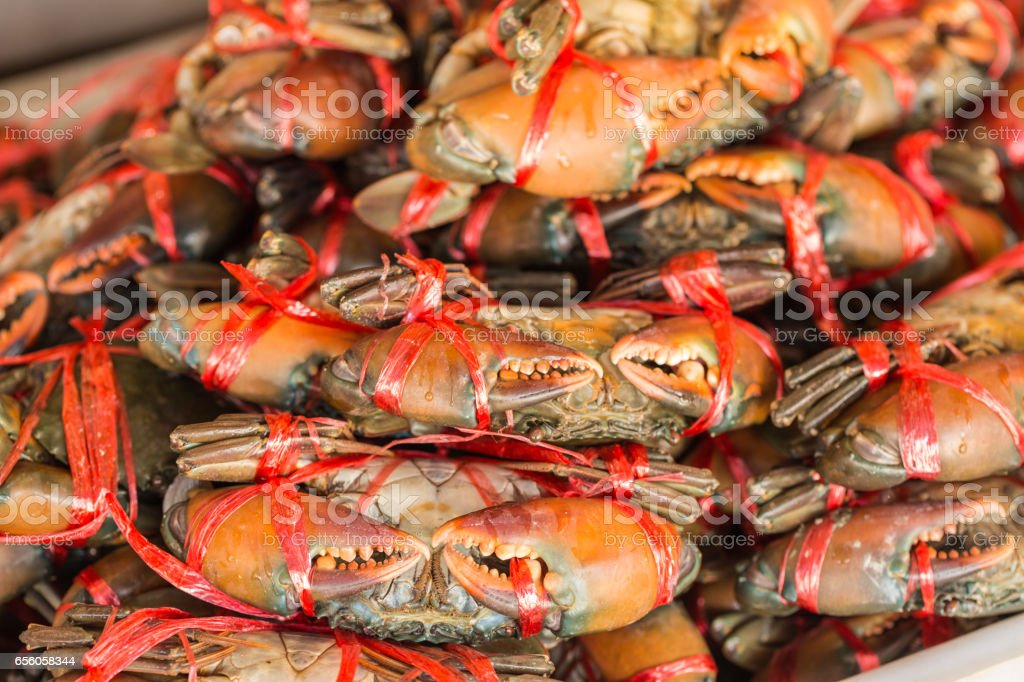 crabs in seafood market stock photo