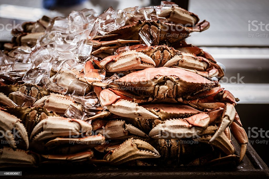 Crabs on ice royalty-free stock photo