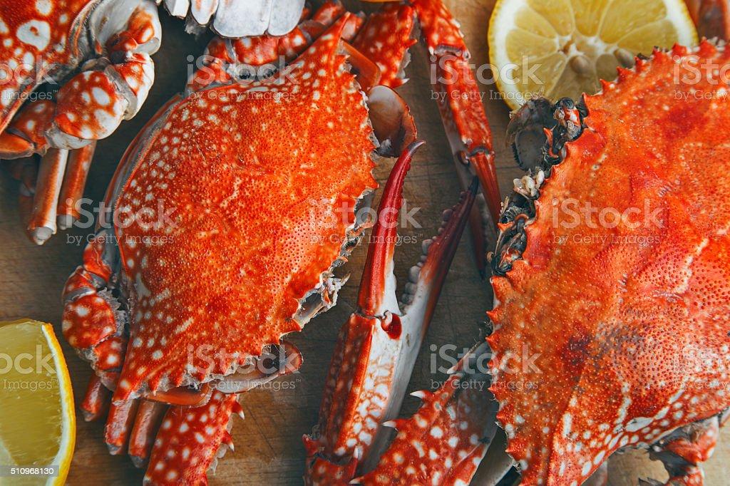 Crabs stock photo