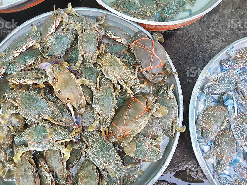 Crabs raw fresh in market, seafood stock photo