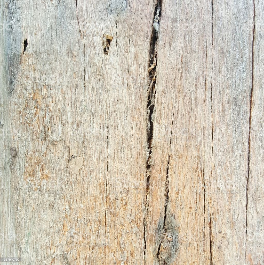 crack wood texture stock photo