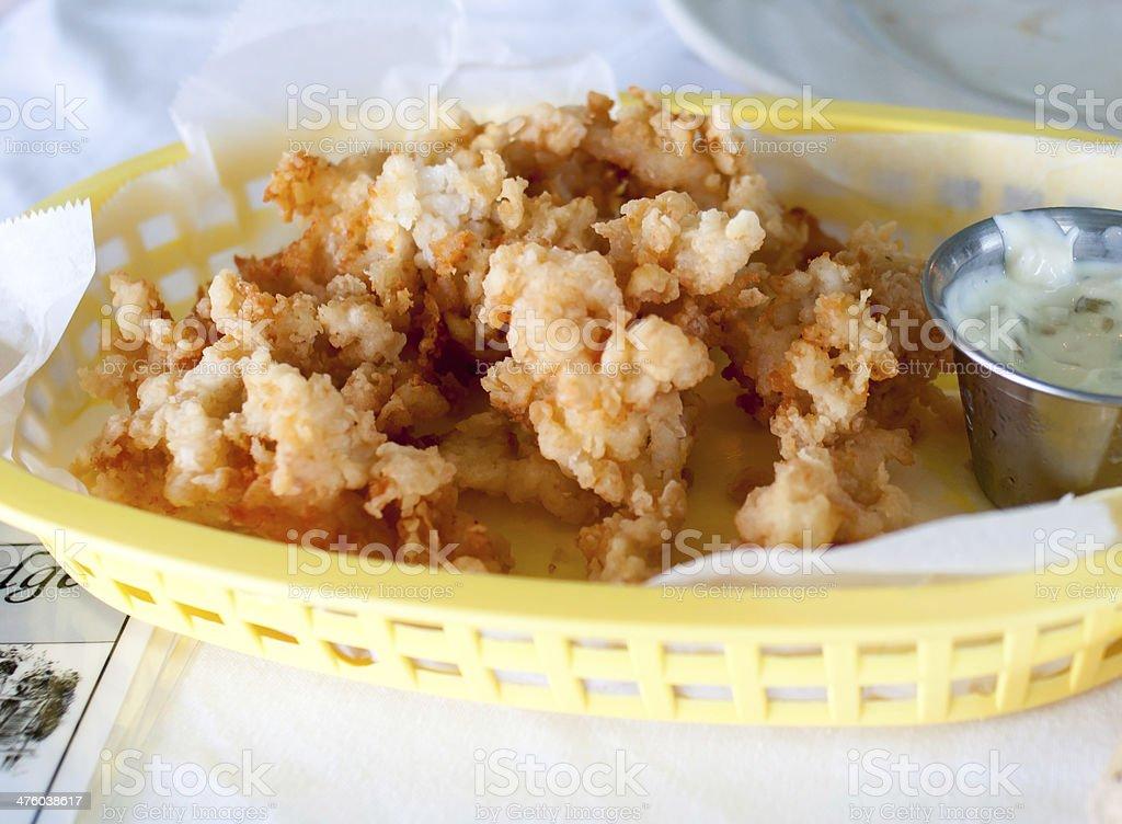 Cracked Conch stock photo