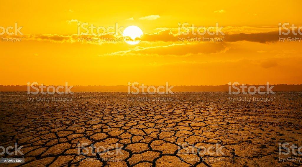 cracked desert stock photo