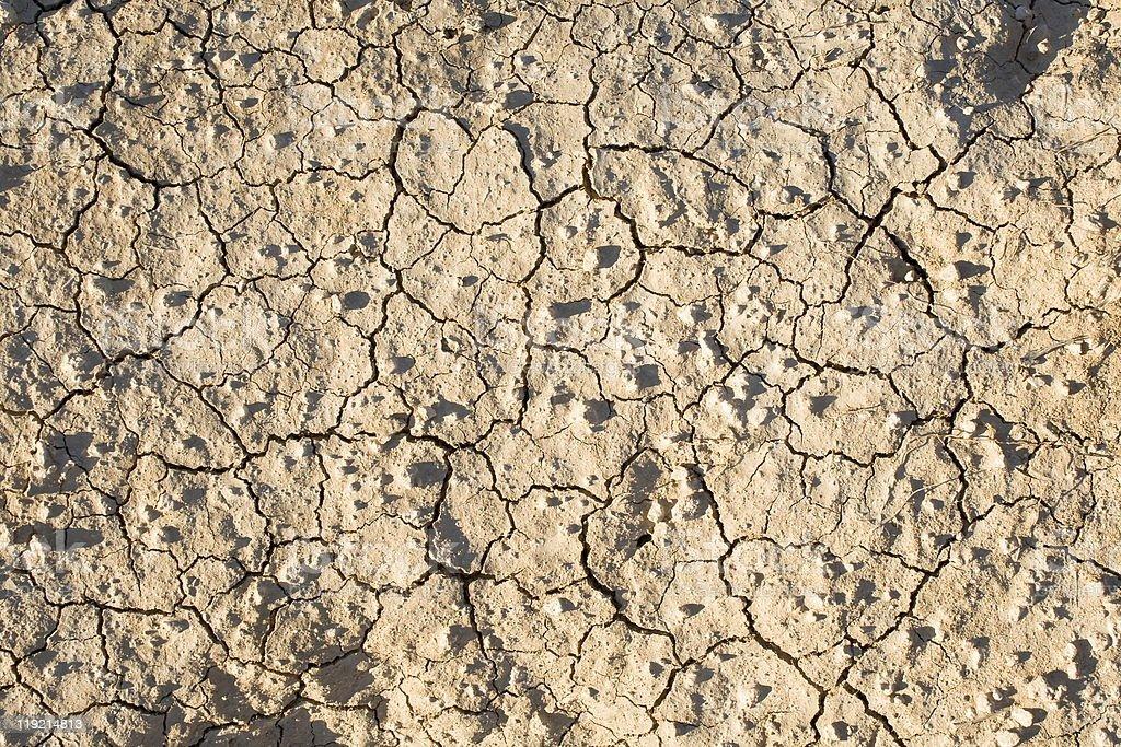 Cracked dry ground. royalty-free stock photo