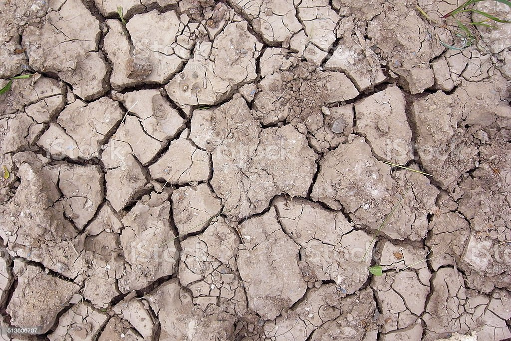 Cracked dry soil texture. stock photo