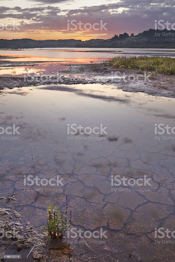Cracked earth and reflections at sunrise stock photo