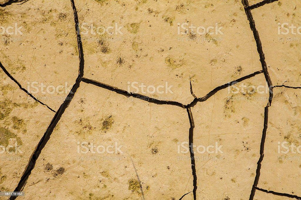 Cracked Earth Background(XXXL) stock photo