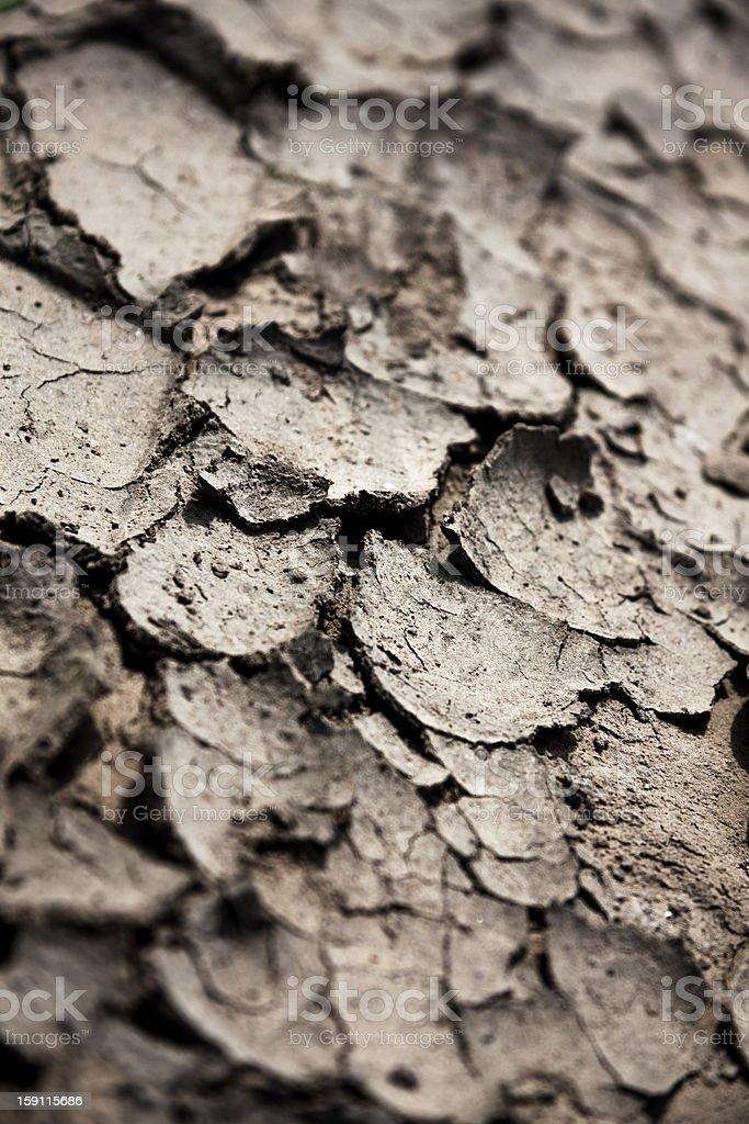 Cracked earth royalty-free stock photo