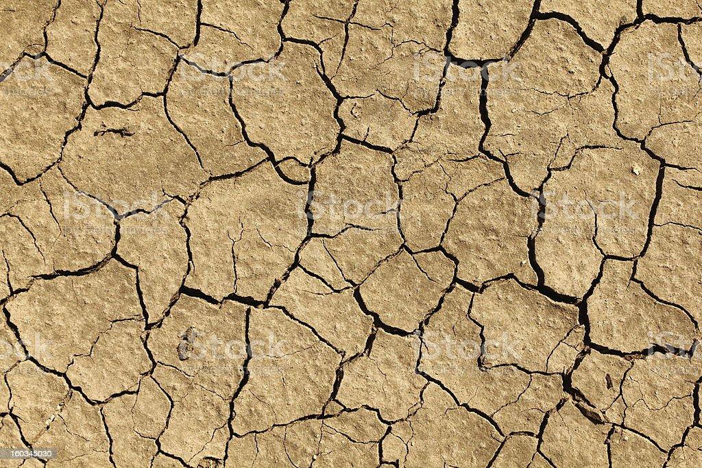 Cracked earth stock photo