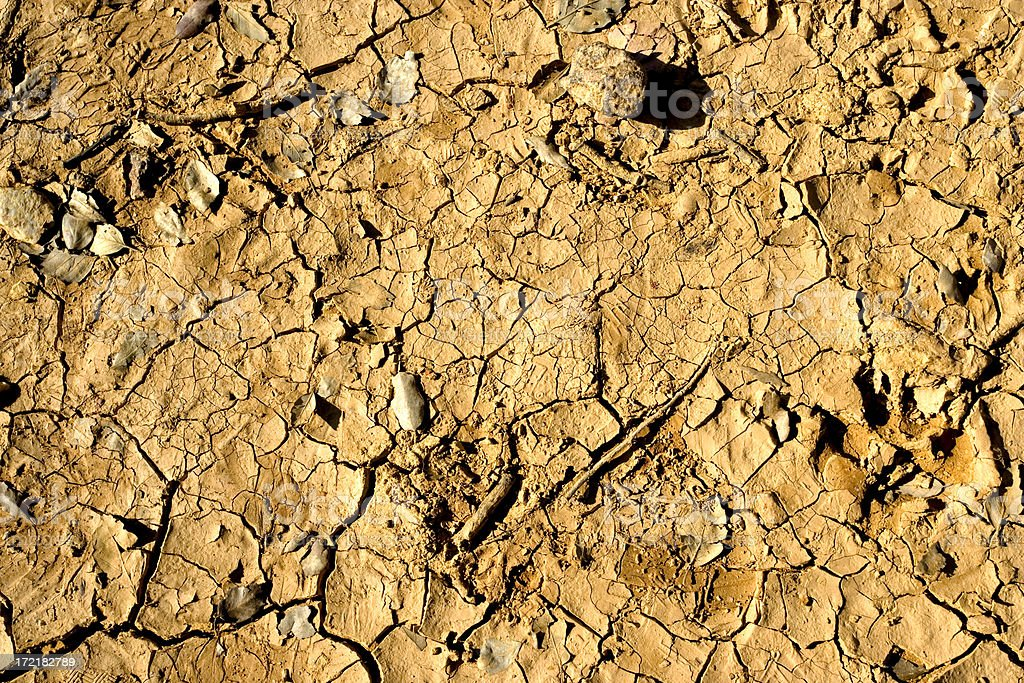Cracked earth royalty-free stock photo