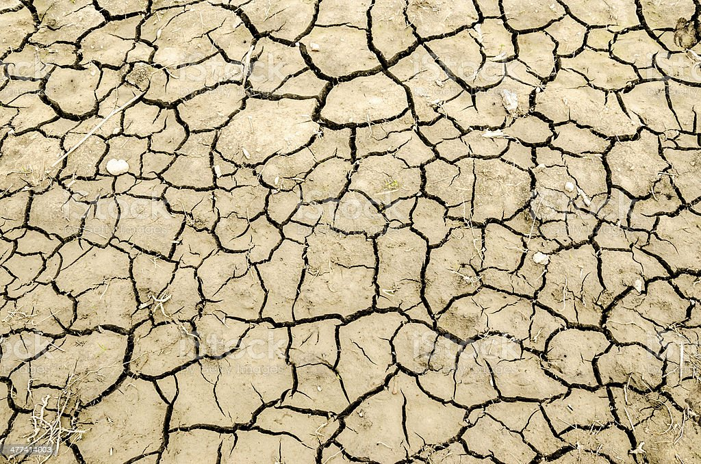 Cracked earth texture stock photo
