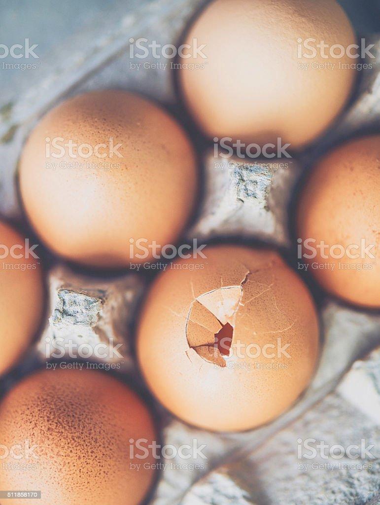 Cracked egg in cardboard egg carton stock photo