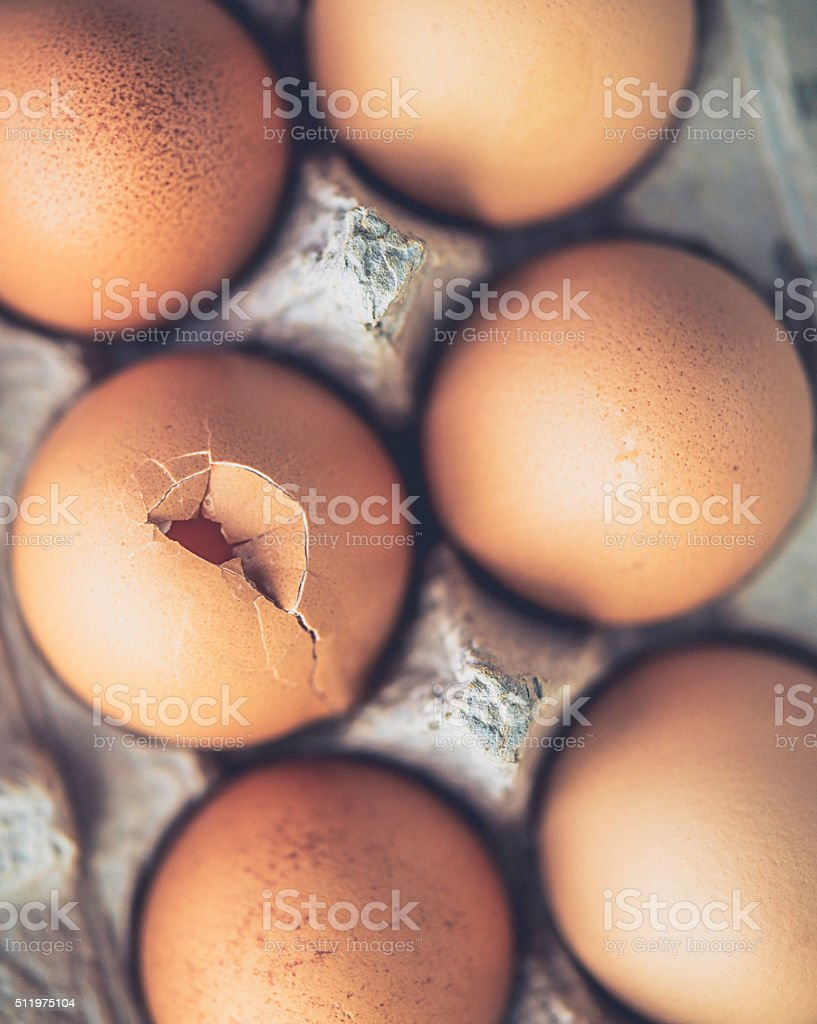Cracked egg in cardboard egg carton stock photo