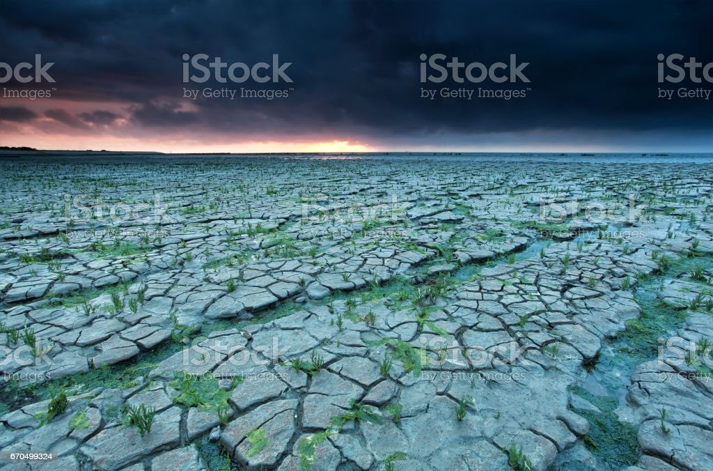cracked mud at low tide, Waddensea stock photo