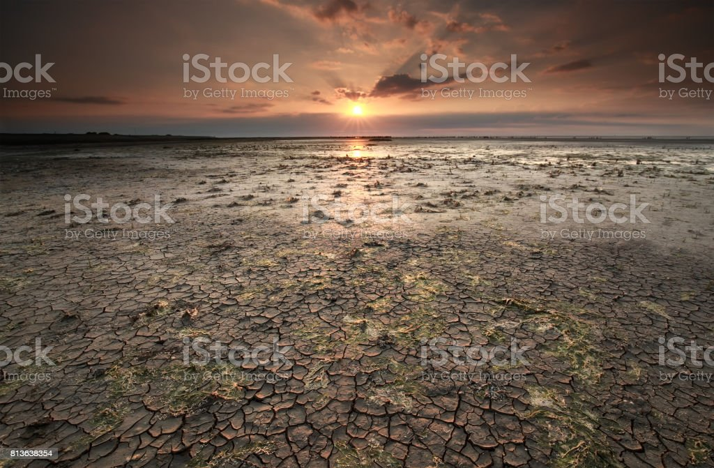 cracked mud at Wadden sea coast at low tide stock photo