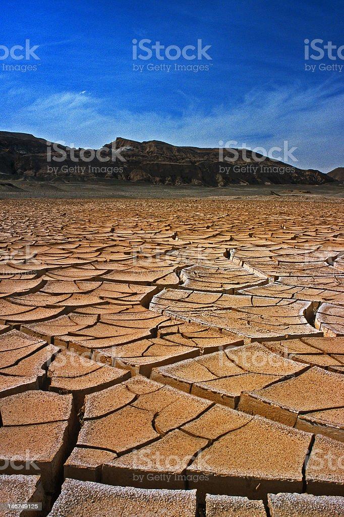 Agrietado Mud desierto foto de stock libre de derechos